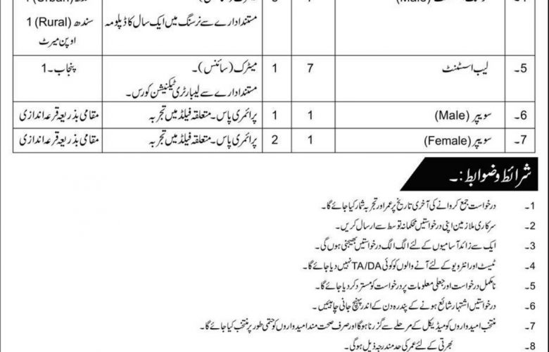 jobs in rawalpindi 11 august 2019 - Umang