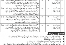 Wapda jobs in November 2019